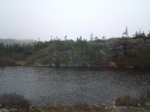 One of the many ponds along the road to Nippers Harbour, NL