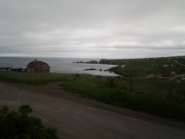 View from Grates Cove Studio rental house