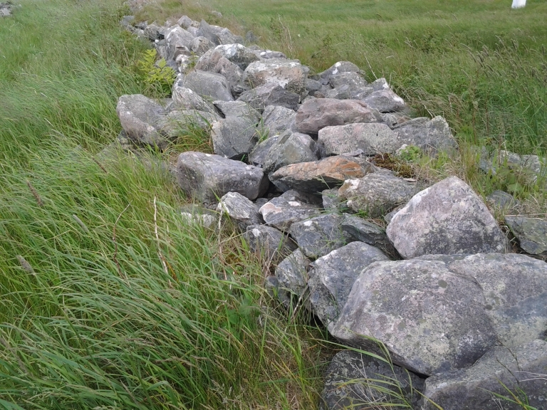Rock walls were used to clear fields and divide property as well as to keep animals in our out of gardens. Unique to this area of Newfoundland and Labrador.
