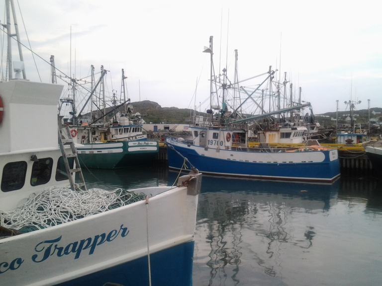 Crab boats in Durrell