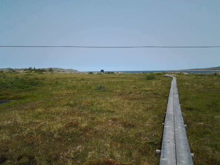 Boardwalk to the Tower Studio, Shoal Bay, Fogo Island