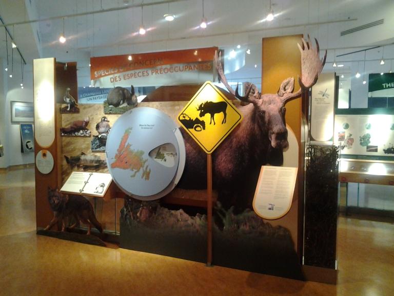 Woody Point interpretation Centre, Gros Morne National Park, NL
