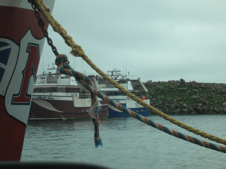 Crab boats, Bay de Verde, NL