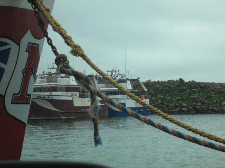 Crab boats, Bay de Verde, NL