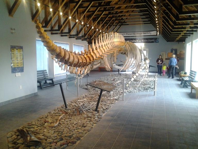 Humpback Whale Pavilion, Kings Point, NL