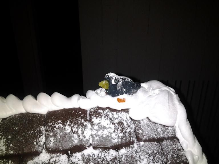 Detail on gingerbread house, Fogo Island Inn, Christmas 2013