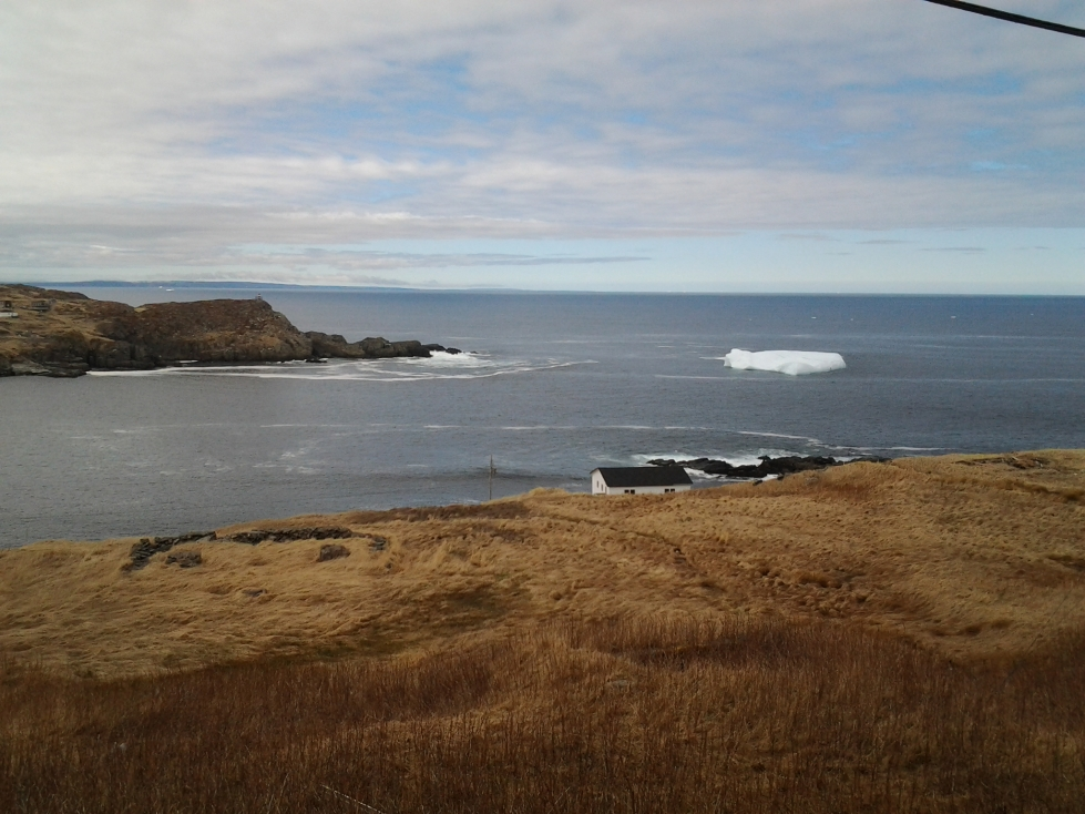 Iceberg in Grates Cove foundered (rolled and therefor changed shape) the night before!