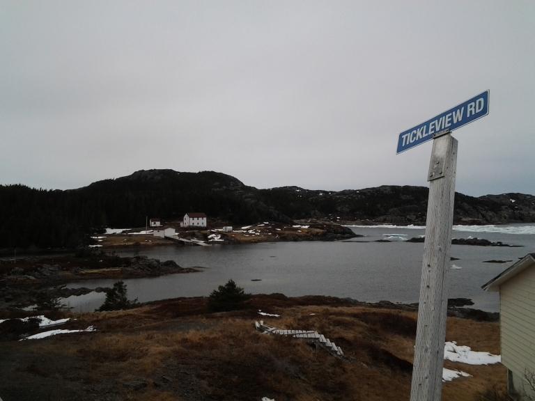 Tickleview sure tickled me. Salt Harbour Island, NL