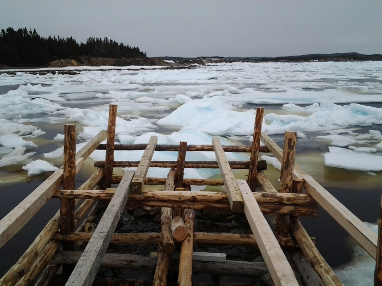 One of many 'sketchy' wharfs on our day. Pack ice near Twillingate, NL