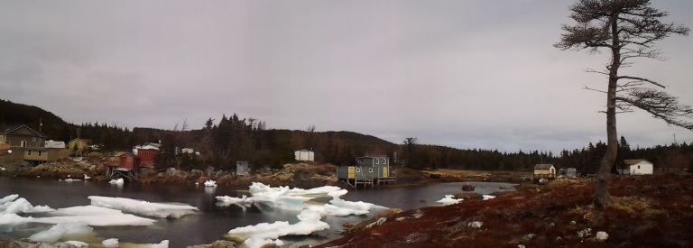 Black Duck Cove, Twillingate Island, NL
