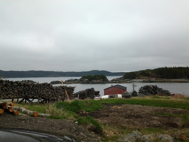 Purcell's Harbour, Newfoundland and Labrador May 2014