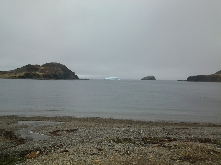 Back Harbour, Twillingate, NL May 25, 2014