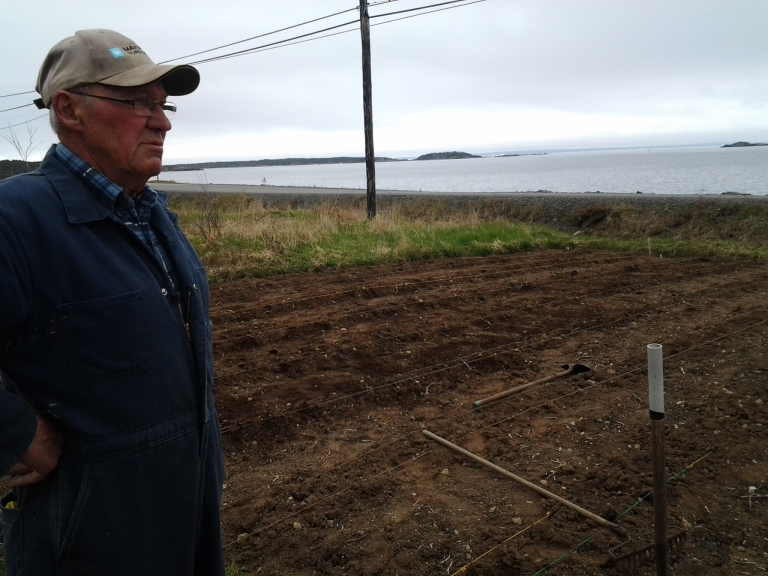 """Joe Anthony's garden is carefully lined off as he amends the soil for planting. The community garden hasn't been plowed the past two years but he doesn't mind. He's """"only 75 years old."""" Thanks for the visit, Joe."""