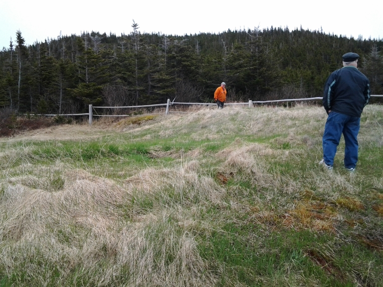 The root cellar and other out buildings were on this part of the property when Leo and Cyril were kids and the hill in the background was barren. Island Harbour, Fogo Island