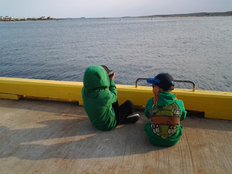 Watching for mom in the Fogo Island Punt Race 2014.