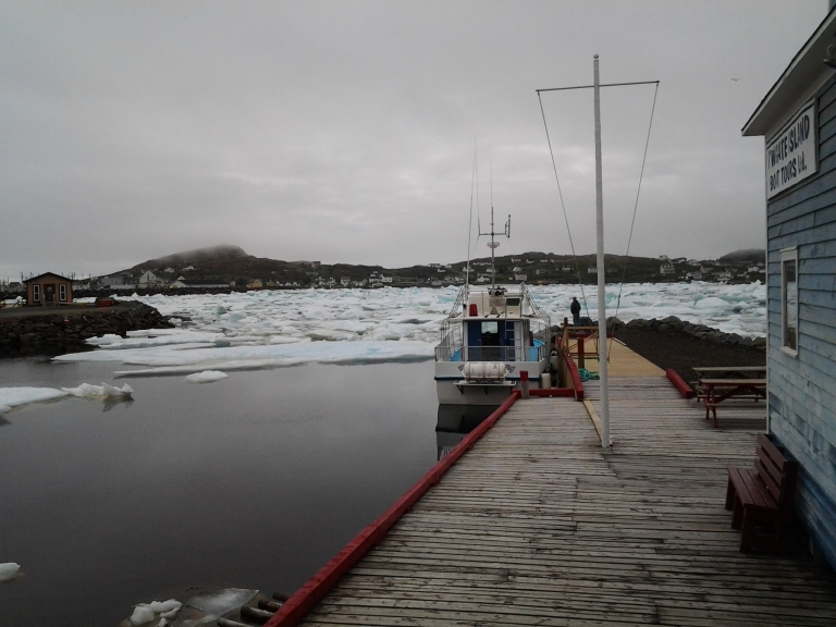 Iceberg Man iced in June 22, 2014. None of the tour boats could get out for two days.