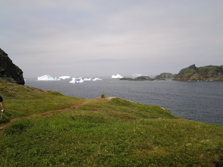 Sleepy Cove reconnaissance for icebergs.