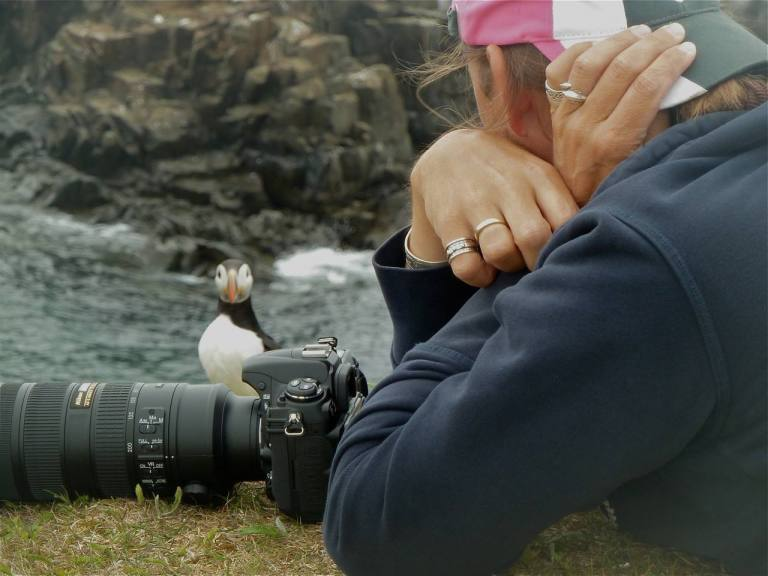 Photographer Paul Dolk and a puffin friend, Open Hall, Newfoundland