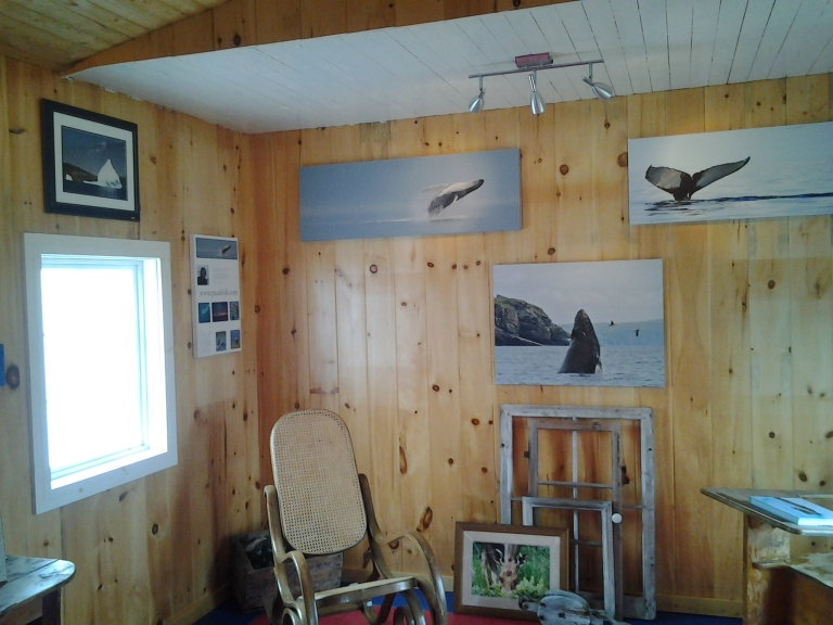 Paul Dolk's amazing canvass prints of his photographs. Open Hall, Newfoundland
