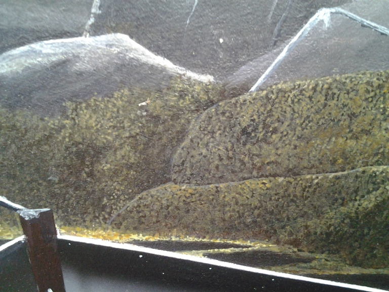 Close detail in Jeff Musseau's paintings.