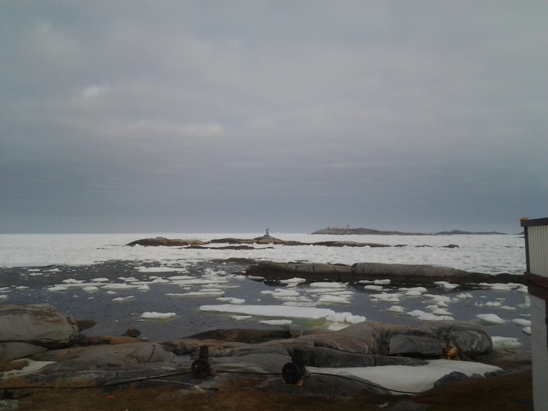 icebergs on the horizon. The view in front of the Old Salt Box House Greenspond, May 2, 2015