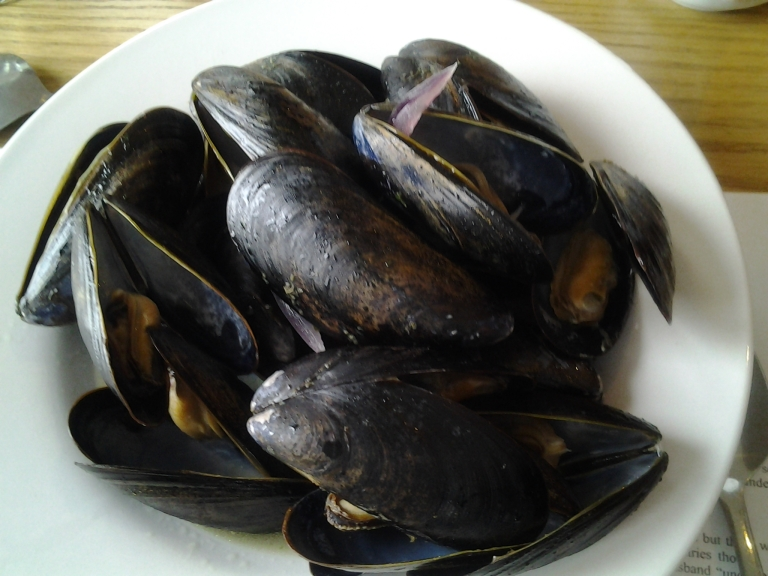 Fresh mussels in a white wine broth, Old Shoppe Restaurant, Newtown, NL May 31, 2015